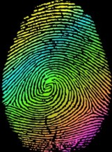 Colored-Fingerprint-Vector