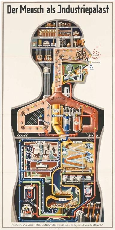 1926 - Der Mensch als Industriepalast (Homem como Palácio Industrial) - Fritz Kahn (1888–1968)